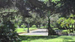 Fruehlingsblumen_und_Urlaub_Cinque_Terre_Mai_2012_021